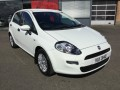 Used Fiat Cars